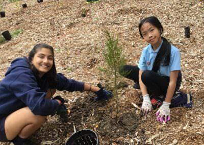 Children working on biodiversity enivronmental education activity