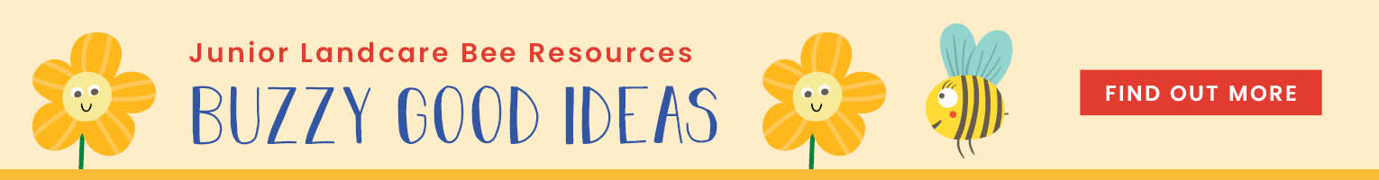 Good ideas for bee related learning activities