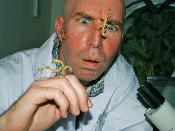 Sam the Science Man with stick insects on this face