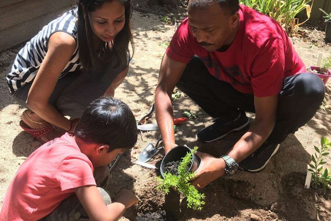 Young student planting seedling with supervision