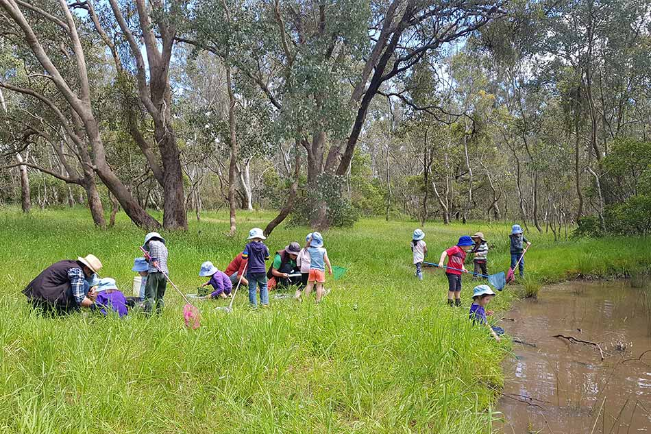 Bush kinder kids out in the field