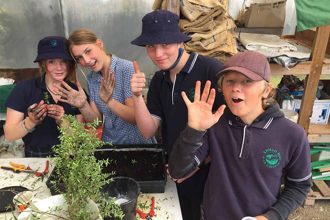 Students at Apollo Bay P-12 College getting hands-on propagating native plants.